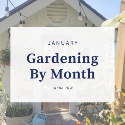 Gardening By Month – January
