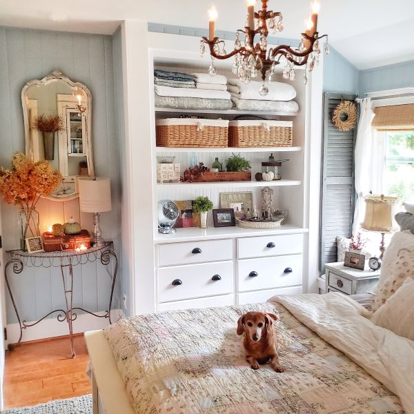 Mini dachshund laying on bed in bedroom with home decor