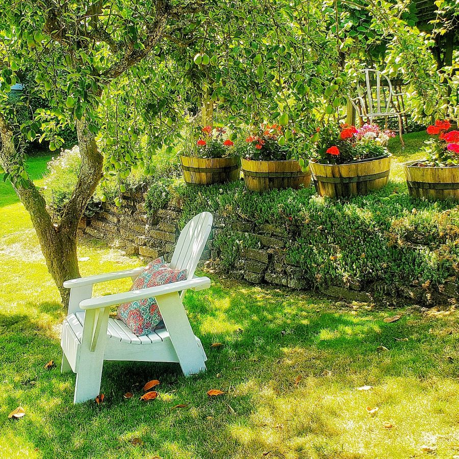Here's a peaceful spot in my cottage garden to have a seat and relax