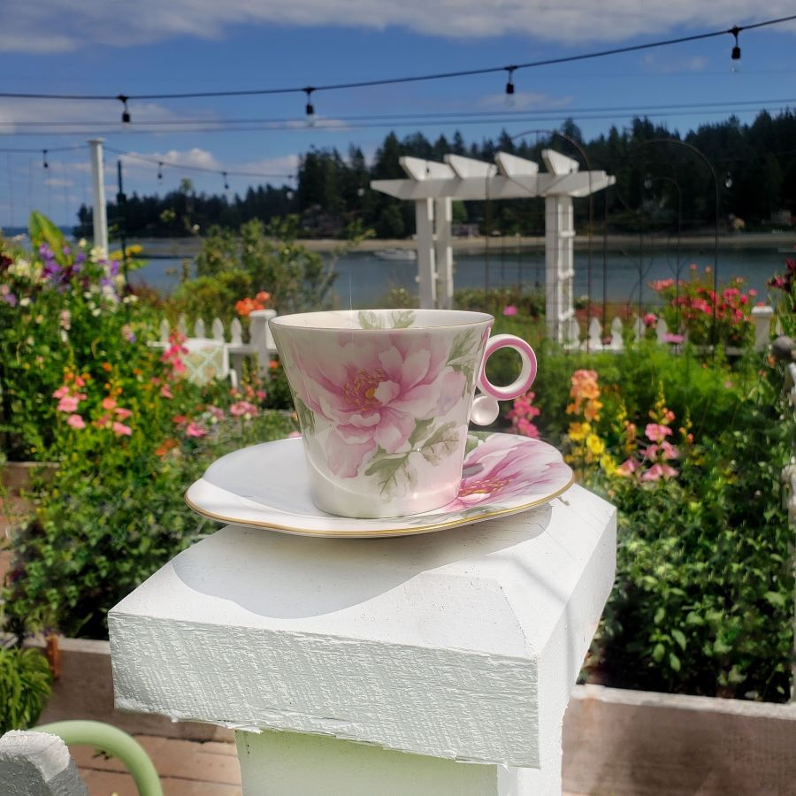 The rose traveling teacup surrounded by a picket fence flower garden