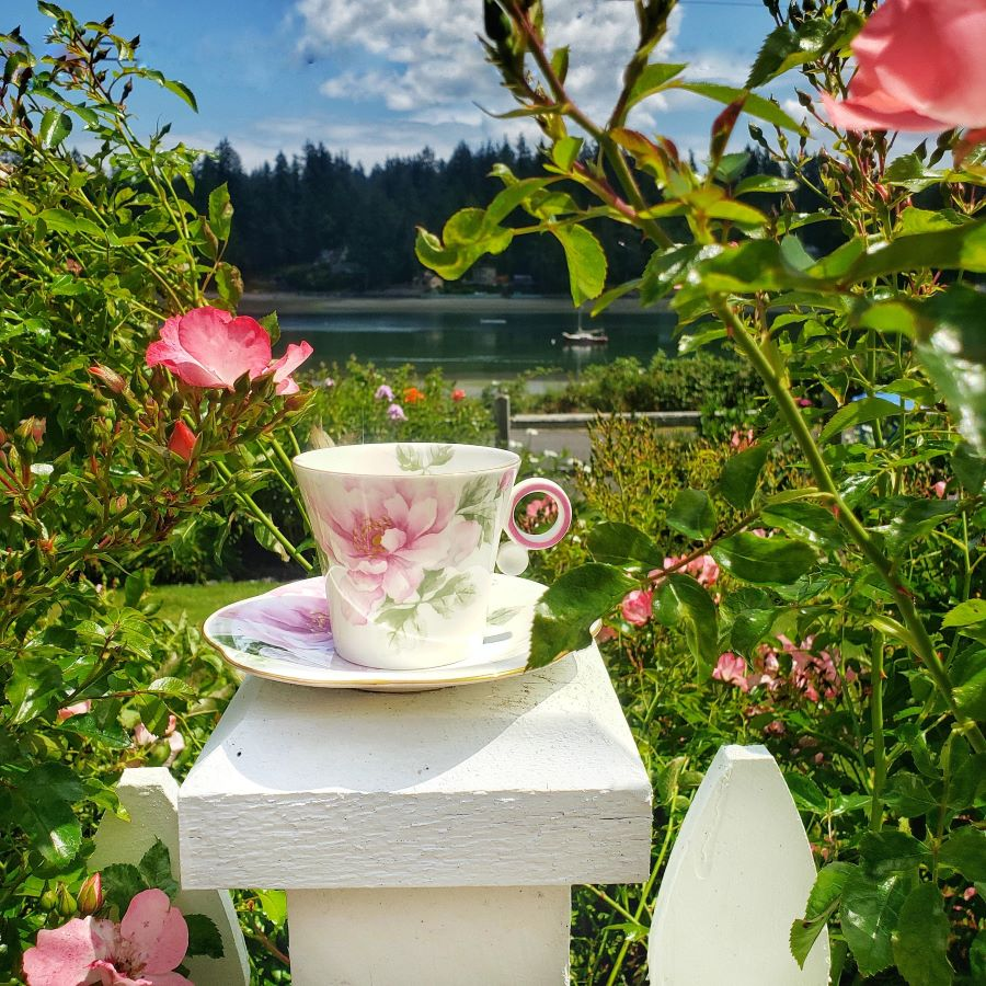 The rose traveling teacup on a white post overlooking a rose garden