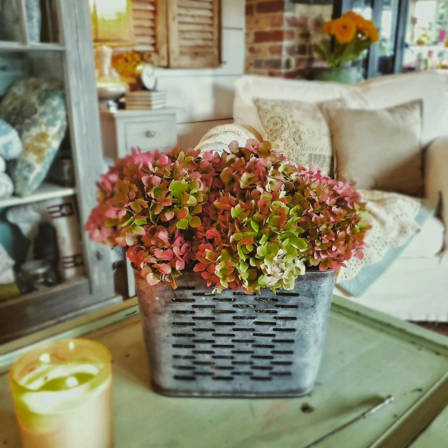 fall colored hydrangeas on coffee table