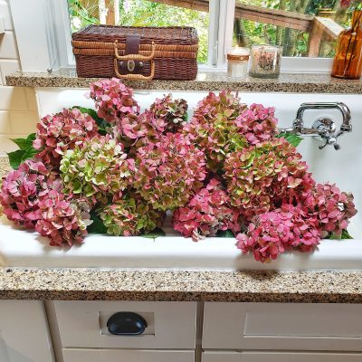 3 Easy Ways to Dry Hydrangeas
