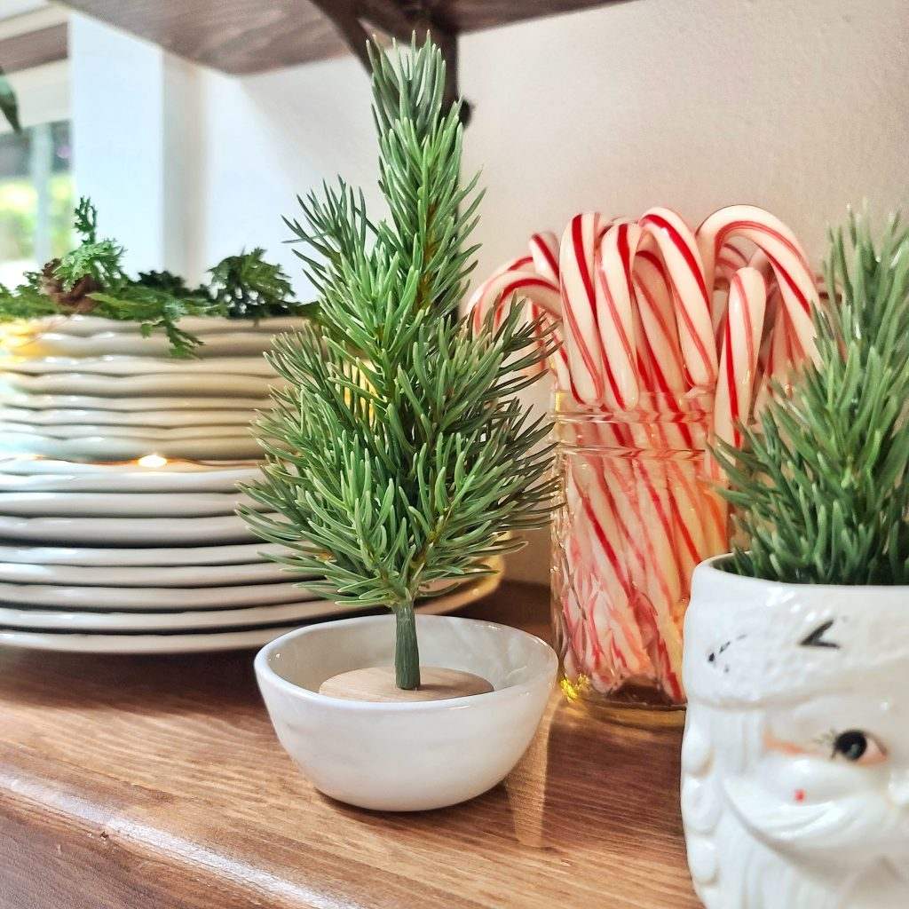 Ironstone dishes with mini Christmas tree and candy canes