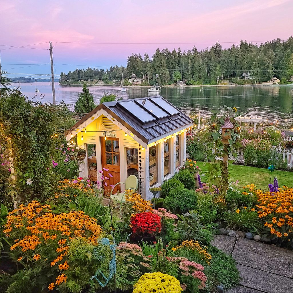 fall cottage garden and greenhouse at sunset